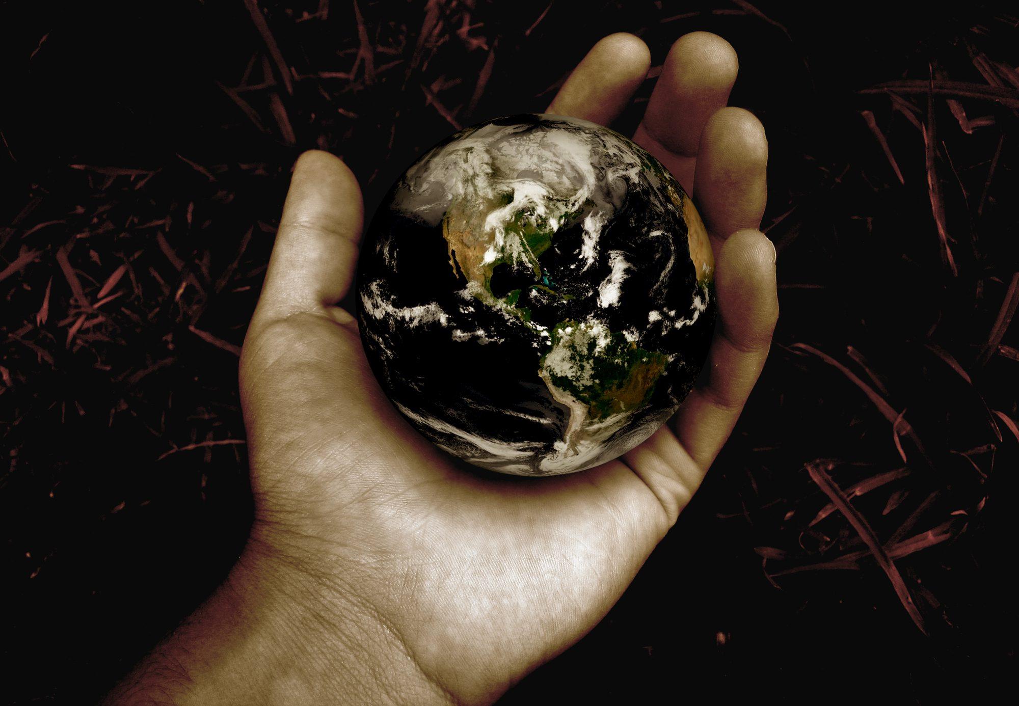Jóga és környezetvédelem