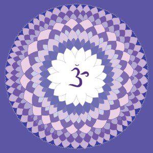 violet-1340083_1280 (1)