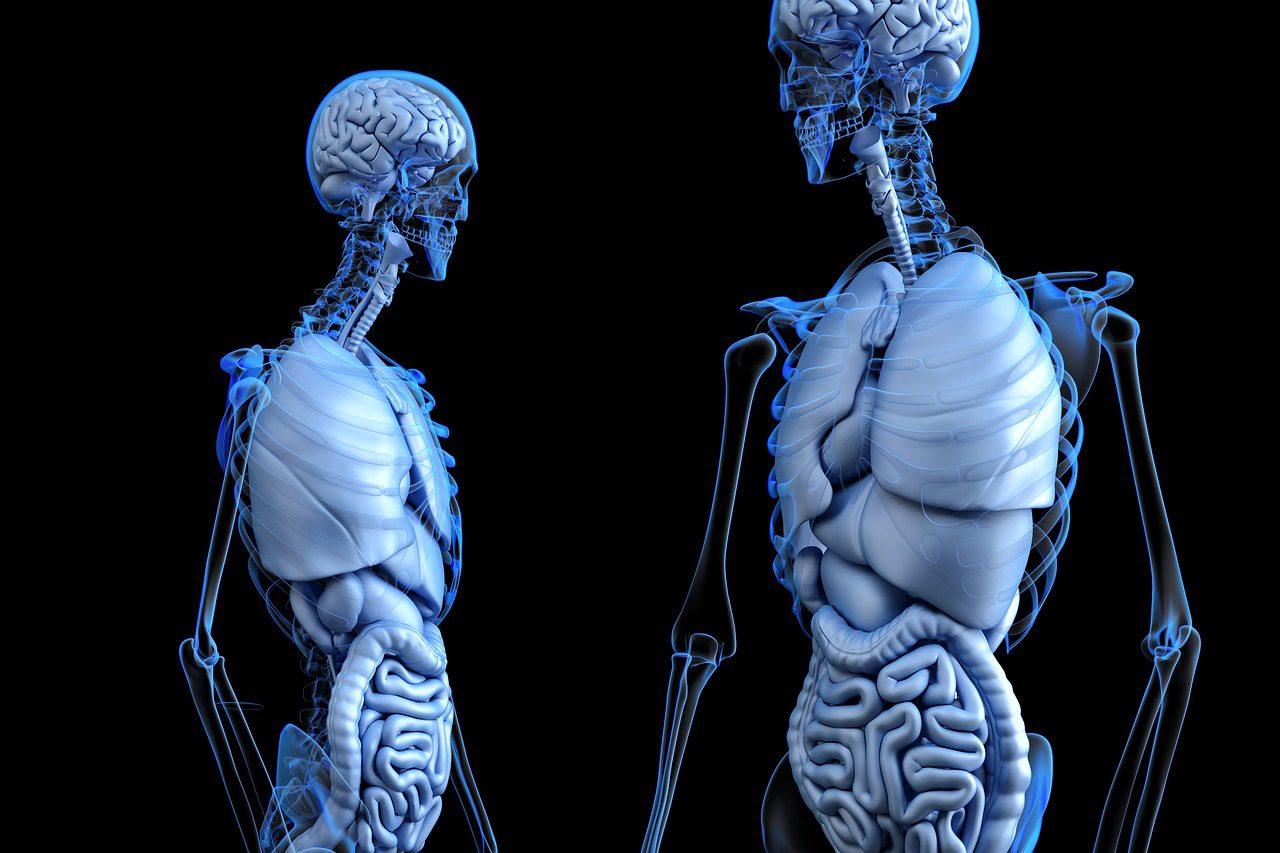 Jógával a csontritkulás ellen