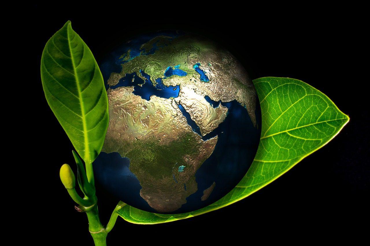 Ilyen egyszerűen csökkenthetjük az ökológiai lábnyomunkat